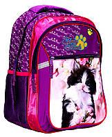 Ранец-рюкзак школьный RAINBOW  2 отделения арт.8-521