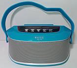 Акустична Bluetooth-колонка зі світломузикою WSTER WS-Y96, blue, фото 2