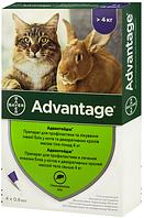 Bayer Advantage 80, 1 уп.