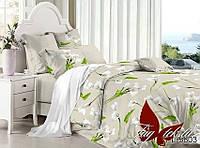 Евро-maxi комплект постельного белья с компаньоном PL5803