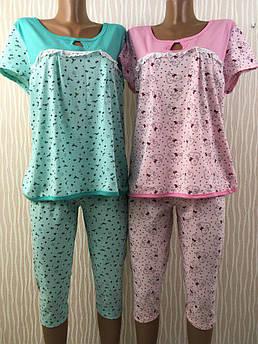 Женская летняя пижама Красотка Размер 48 - 62