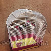 Клетка «Лина» для маленьких и средних птиц, фото 2