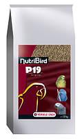 Versele-Laga NutriBird P19 ОРИГИНАЛ, Tropical РАЗВЕДЕНИЕ корм для попугаев, фото 2