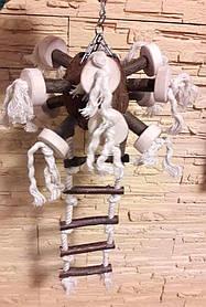 Игрушка с лестницей для попугая, Кокос