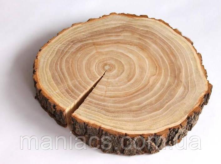 Срез дерева. Вяз 16 - 20 см