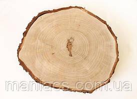 Срез дерева. Вяз 21 - 25 см