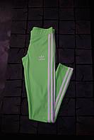 Женские лосины Adidas.Салатовые/три полоски