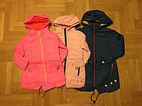 Куртка  на синтепоне   для девочек   116 / 146 см
