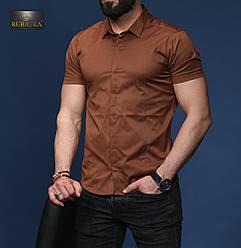 Стильна коричнева класична чоловіча сорочка з короткими рукавами на гудзиках Туреччина,С,М,Л,ХЛ