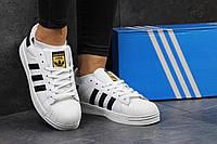 Кроссовки женские в стиле Adidas Superstar SD1-2731 Материал натуральная кожа. Белые