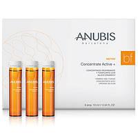 Укрепляющий тонизирующий концентрат Anubis 1флх10 мл / B&Firm Concentrate Active+