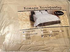 Одеяло 4 Сезона 150*210 Лери Макс, фото 2