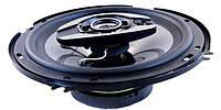 Автомобильные колонки Pioneer TS 1673