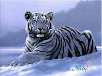 """Алмазная вышивка """" Белый тигр"""", фото 1"""