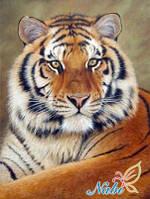 """Алмазная вышивка """"Тигр"""" (техника рисование камнями), фото 1"""
