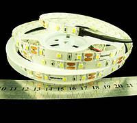 Светодиодная лента Rishang 2835-60-IP33-CWb-8-12 R0860TA-C  Premium
