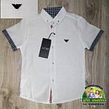 Стильный брендовый комплект Armani для мальчика 3-4 года: белая рубашка и синие брюки, фото 3