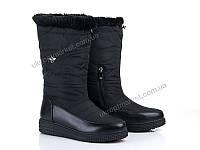 "Сапоги женские  ""Allshoes""(130488) 8 пар р.36-41 (2P/RZ-000)"
