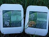 Микро Минералис Фосфор Калий для комплексной подкормки Зерновых. Обработка пшеницы Микрокомплексом., фото 4