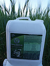 Мікро Минералис Фосфор Калій для комплексної підгодівлі Зернових. Обробка пшениці Микрокомплексом.