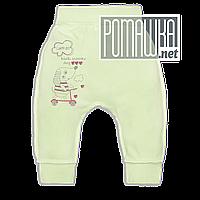 Штанишки на широкой резинке р. 56 демисезонные ткань ИНТЕРЛОК 100% хлопок ТМ Авекс 3297 Зеленый А
