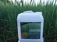 Мікродобриво Мінераліс Зернові для листкового внесення на Ячмень Пшеницю в критичних фазах росту.