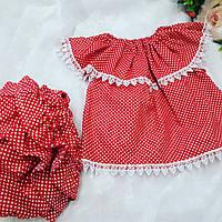 Трусики под памперс для девочки + туника (Красного цвета в белый горошек), фото 1
