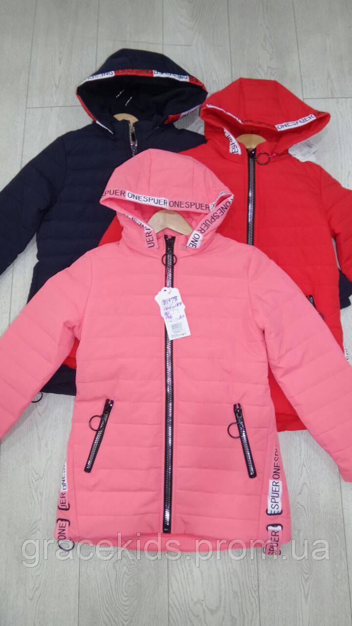4d044d73a938 Осенние подростковые куртки для девочек оптом GRACE  продажа, цена в ...