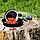 Ягоды годжи ОПТ, фото 2