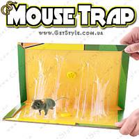 "Ловушка для грызунов - ""Mouse Trap"" - 2 шт., фото 1"