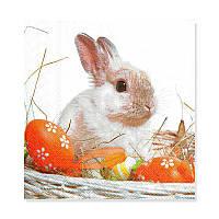 Салфетка для декупажа — Кролик, размер в развёрнутом виде 33x33 см, Германия