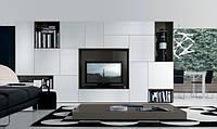 Дизайнерская мебель в гостинную, фото 1