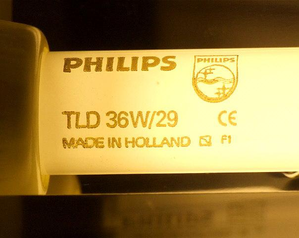 Люминесцентная лампа PHILIPS TL-D 36W-1/29, T8