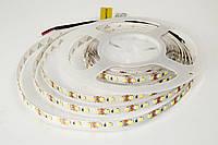Rishang LED лента SMD 2835, 120шт/м, 8,4 Вт/м, IP33, теплый белый