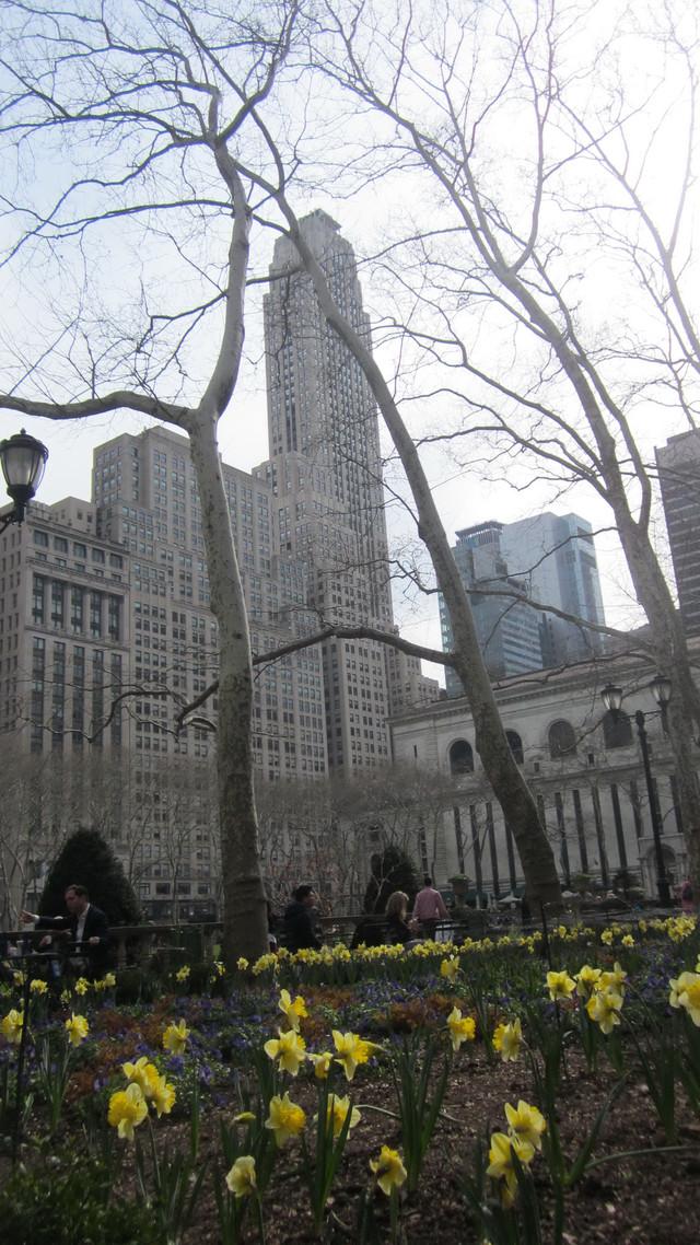 Радел Трикотажные брюки - фото teens.ua - Нью-Йорк,Манхеттен,нарцисы