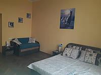 Аренда однокомнатной квартиры в г. Львов