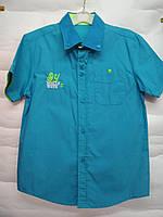 Стильная рубашка Sun Bear 10 лет, фото 1