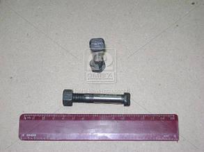 Болт шатуна ГАЗ 53, 3307 с гайкой (пр-во ЗМЗ). 53-1004060-04. Ціна з ПДВ.