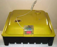 """Инкубатор полуавтоматический IO-1P TE на 56 яиц. (""""ARGIS"""", """"ASEL"""", """"BOROTTO"""")"""