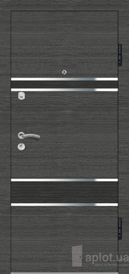 Двері вхідні. Aplot. Silver steel
