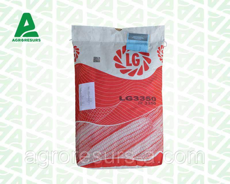 Семена кукурузы ЛГ 3350/LG3350 (ФАО 350)