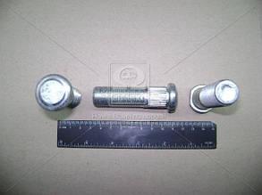 Болт  ступицы колеса ГАЗ 3308, 3309, 33104 Валдай заднего (пр-во ГАЗ). 3310-3104018. Цена с НДС.
