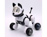 Интерактивная собака на радиоуправлении, фото 1