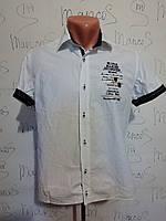 Шведка Blue&Marine рубашка, фото 1