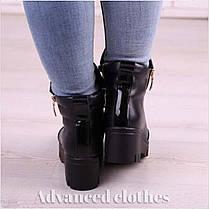 Ботинки с молнией сбоку натуральная кожа байка, фото 3