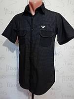 Шведка Emporio Armani рубашка , фото 1