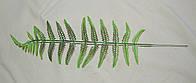 2-9 Лист аспарагуса (пластик), фото 1