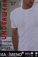 Чоловіча футболка ТМ Maximeno оптом!