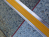 Порожная планка с противоскользящей вставкой 48 мм, фото 2