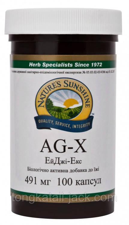 ЭйДжи-Экс (AG-X)